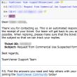 おやぢチップス (82):TeamViewer でライセンスが必要とみなされたら・・・