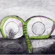 草の目(色鉛筆作品紹介460)とガーデニング