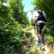 トレイルランニング(二王子岳1400m)