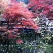 往く山寺の秋