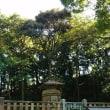 11/12(日)~13(月) 三島スカイウォークと久能山東照宮 Ⅱ