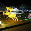 【京都府立植物園】観覧温室の夜間開室とイルミネーション2018実施のお知らせ(2018年12月15日~25日)