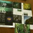 「沖ノ島」展と 「ベルギー奇想の系譜」展