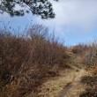 2018.11.10:白樺並木が見たくて比婆山一周