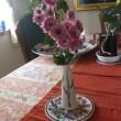 初冬のランタナにスカシバと卓上の菊