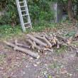 駐車場の立木伐採 -磯子ヴィレッジ-