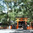 下鴨神社 糺ノ森 その2