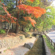 10/17(水)のPACニュース~追分&軽井沢周辺の情報
