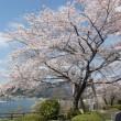 【 春の気配 】