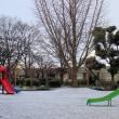 大阪にもやっと雪! けれど‥
