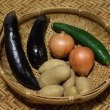 山楽の 山の野菜セット ~9月〔4〕回目・10月〔1〕回目