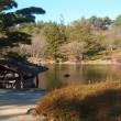昭和記念公園に行った時の写真