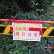 風切山林道(林道玉の木線)