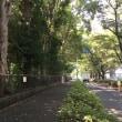 木陰のウオーキングと折鶴