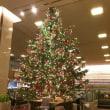 クリスマスツリー2017