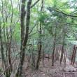 2017.8.12 小檜曽山+三等三角点:下沼 * 京柱峠より