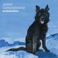 ADVANCE BASE/ANIMAIL COMPANIONSHIP