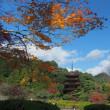 香山公園の紅葉
