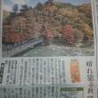 当館裏手の紅葉スポット【紅の吊り橋】が掲載されました