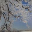 【世界の雪景色】の写真集