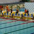 2017 B&G全国ジュニア水泳競技大会