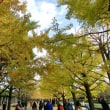 R隊平日ハイク 2017-06 国営昭和記念公園