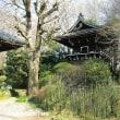 三井寺と呼ばれている「天羅山真盛寺」