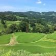 田舎の夏休み
