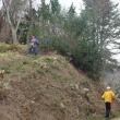 第1回支障木間伐作業