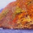 『紅葉の想い出』 十和田湖畔
