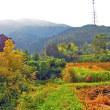 奈良の里山歩き