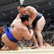 「鶴竜、魁聖が全勝守る 1敗は松鳳山、逸ノ城ら6人 大関2人は4勝目」とのニュースっす。