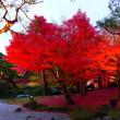 夕方の由志園の紅葉(写真5枚)