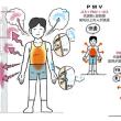 【前真之「いごこちの科学・蒸暑の夏」WEB公開!】
