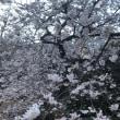 ハピネス戦略-春の匂い、少しずつ