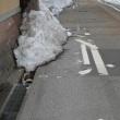 道路も、色色と被害を受けました。春になると、白線も引き直し。