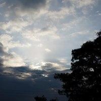 曇り空の、12月24日。22日、23日の朝の光景。