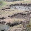 昨年完成した塩津旧池また決壊しそう