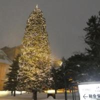 北海道ふっこう2泊3日ツアー@ベッセルイン札幌中島公園
