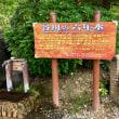 湧水「谷川の六年水」を汲む