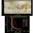 エウロパ噴煙と電離層