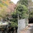 山ボーイ・ジャッキー(妙見山編①) climbed Myoken mountain where is northside of Osaka