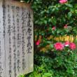 『初冬の寺社』 法虎庵