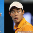 Grand Slam Australian Open CHANPIONSHIPS 2019 Men's Singles Quarterfinals