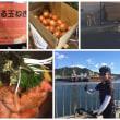 徳島・淡路島にてチャリポタな夏休み 【アワハン×2?】