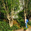 石山幸吉さんの「大逆事件の余波と群馬(下)」をよみました。今日は隆興寺の豊川稲荷の春の例大祭、それともういっこ…
