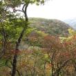 枡形山の紅葉!