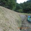 草刈りをしました