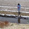 ひげおやじのこだわり農業 モニ1000里地樺の沢日本赤ガエル調査