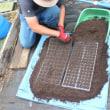 自然育苗種採りコース 8月(秋野菜の育苗:ジャガイモ・タマネギなど)